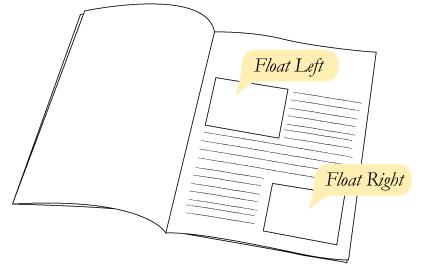 کاربرد اصلی float
